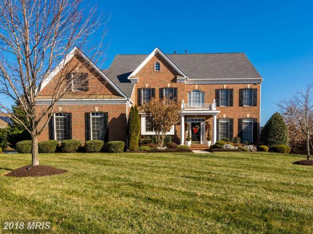 5711 Hillmeade Road, Bowie, MD 20720 (#PG10135274) :: The Bob & Ronna Group