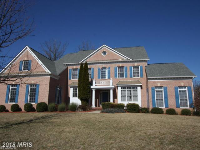12708 Willow Marsh Lane, Bowie, MD 20720 (#PG10160836) :: The Withrow Group at Long & Foster