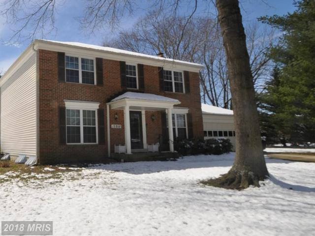 15958 Alameda Drive, Bowie, MD 20716 (#PG10188353) :: The Sebeck Team of RE/MAX Preferred
