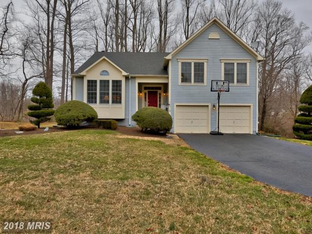 14318 Pleasant View Drive, Bowie, MD 20720 (#PG10195820) :: The Bob & Ronna Group