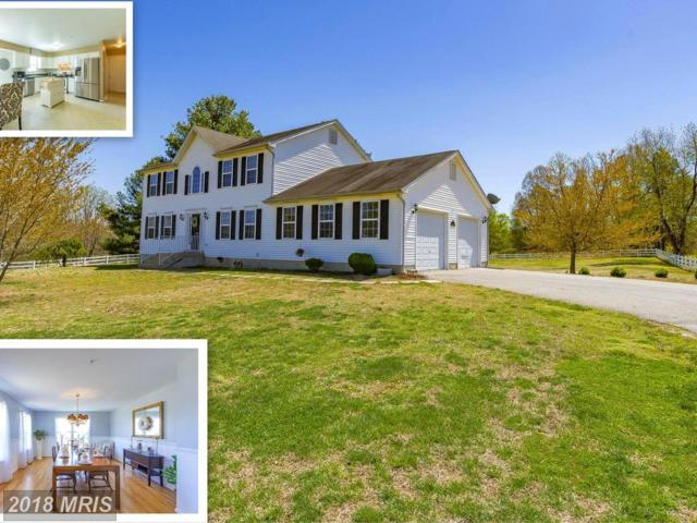 17205 Magruders Ferry Road, Brandywine, MD 20613 (#PG10216623) :: RE/MAX Executives