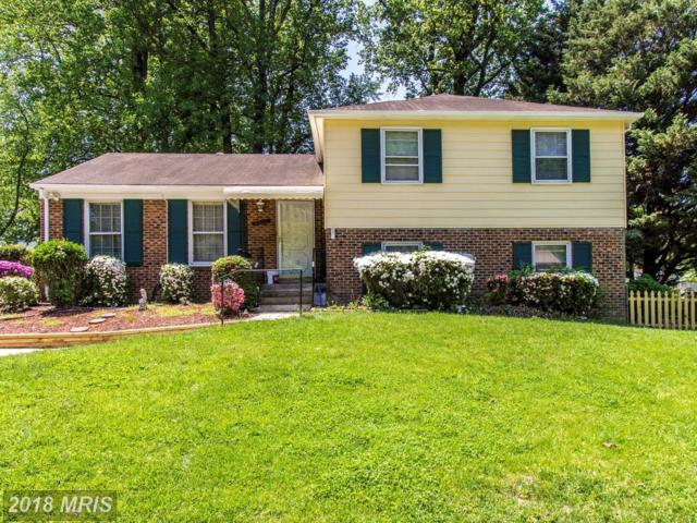 4517 Birchtree Lane, Temple Hills, MD 20748 (#PG10232403) :: AJ Team Realty