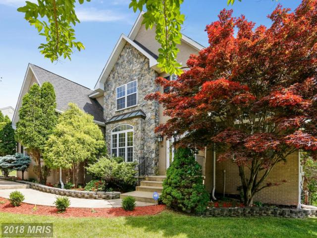10034 Edgewater Terrace, Fort Washington, MD 20744 (#PG10250409) :: ExecuHome Realty