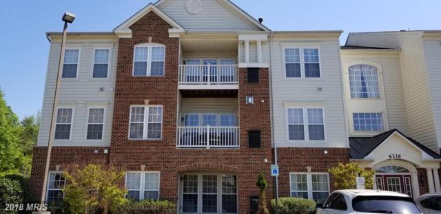 6216 Westchester Park Drive 401A, College Park, MD 20740 (#PG10273501) :: Keller Williams Pat Hiban Real Estate Group