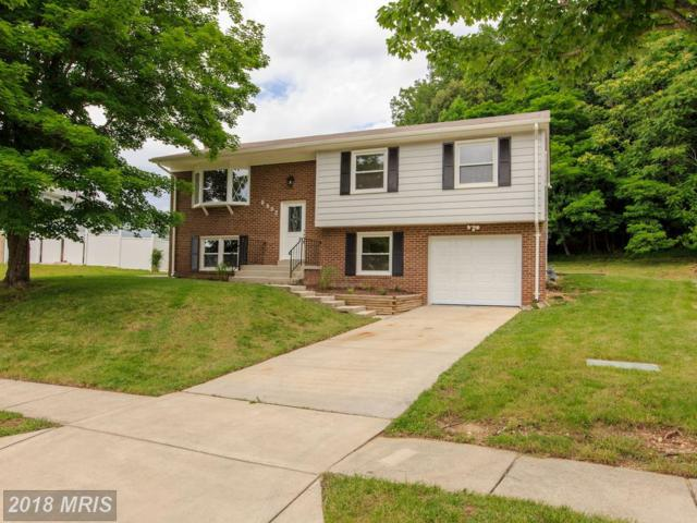 6802 Newlight Court, Fort Washington, MD 20744 (#PG10278686) :: The Sky Group