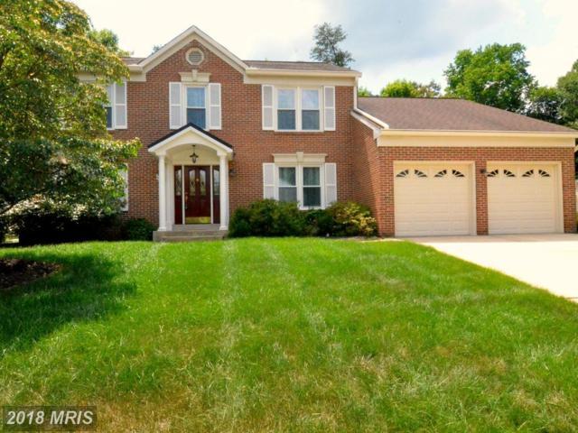11900 Bristolwood Terrace, Laurel, MD 20708 (#PG10282460) :: Bob Lucido Team of Keller Williams Integrity