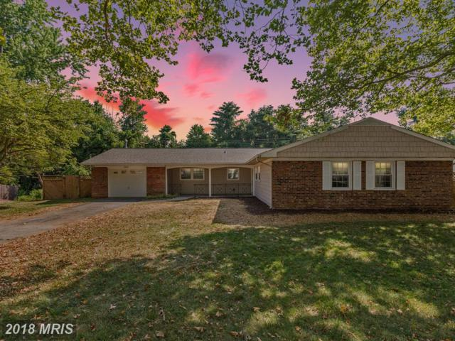 12417 Rambling Lane, Bowie, MD 20715 (#PG10291414) :: The Sebeck Team of RE/MAX Preferred