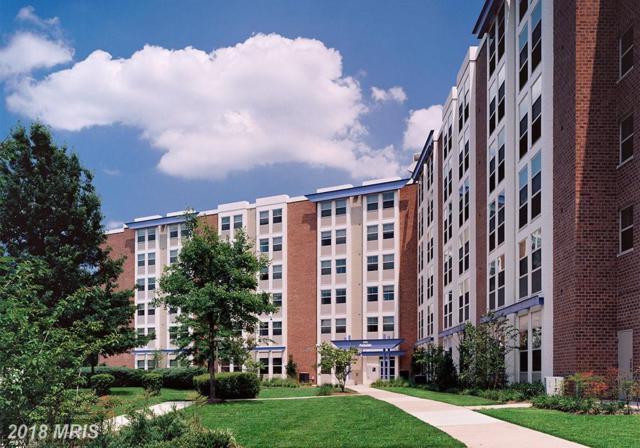 8125 48TH Avenue 415C, College Park, MD 20740 (#PG10318930) :: Bob Lucido Team of Keller Williams Integrity