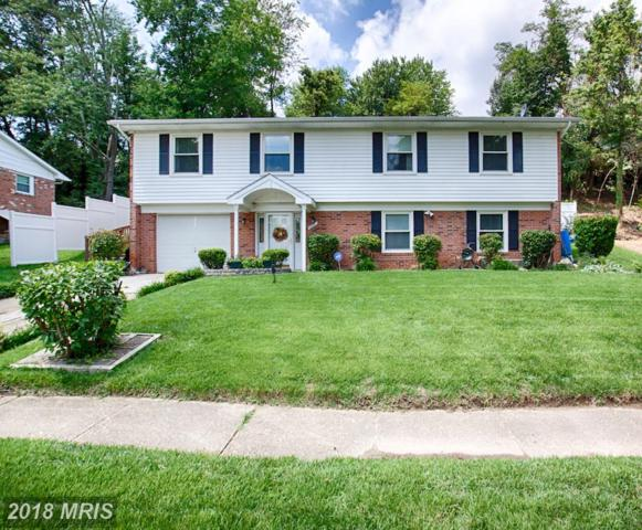 10007 Mike Road, Fort Washington, MD 20744 (#PG10326249) :: Maryland Residential Team