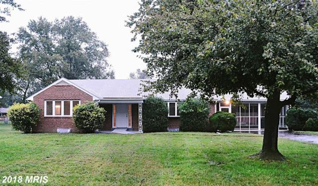 10705 Riverview Road, Fort Washington, MD 20744 (#PG10353915) :: RE/MAX Gateway