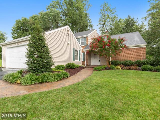 15603 Passaie Lane, Bowie, MD 20716 (#PG9010931) :: Bob Lucido Team of Keller Williams Integrity