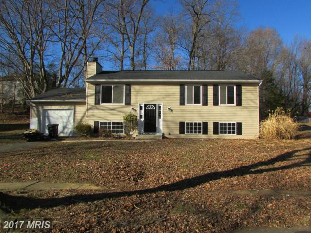 5006 Vienna Drive, Clinton, MD 20735 (#PG9855384) :: Pearson Smith Realty