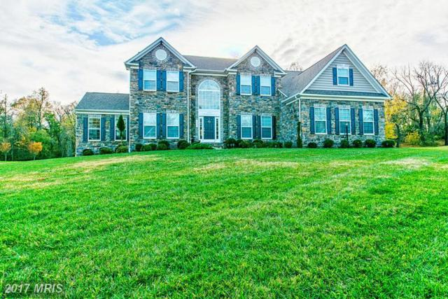 14503 Dew Drive, Bowie, MD 20721 (#PG9874020) :: LoCoMusings