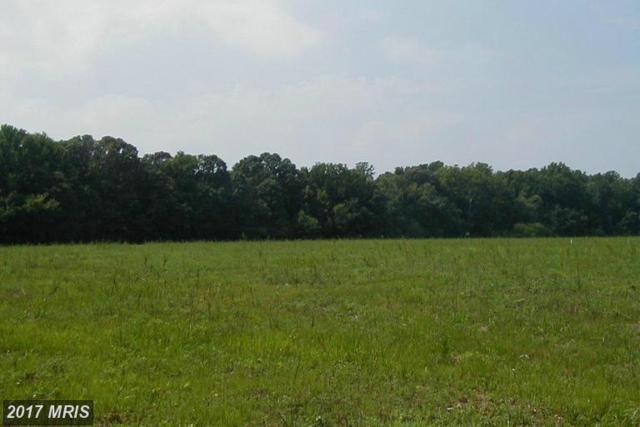 16904 Tanyard Road, Upper Marlboro, MD 20772 (#PG9924265) :: LoCoMusings