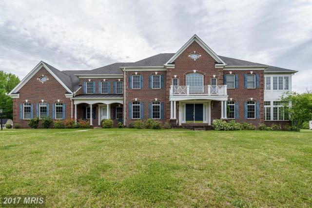 14405 Woodmore Oaks Court, Bowie, MD 20721 (#PG9938681) :: LoCoMusings