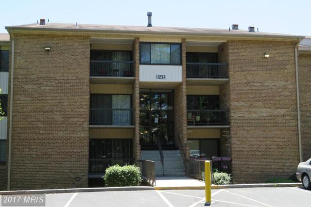11234 Cherry Hill Road #152, Beltsville, MD 20705 (#PG9943025) :: LoCoMusings