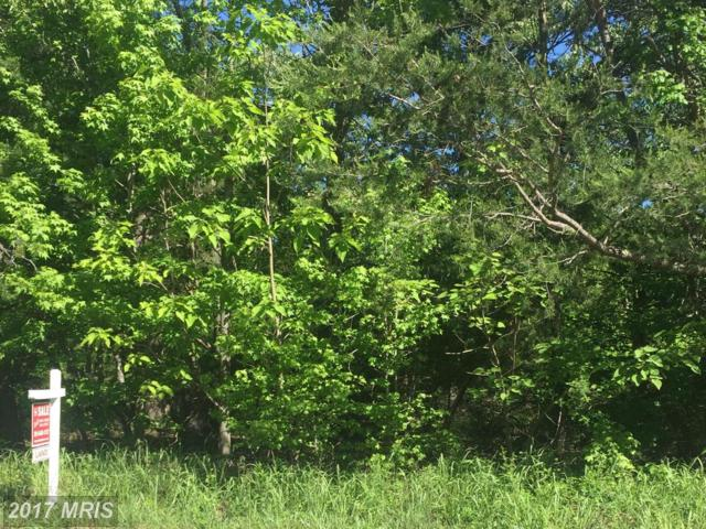 Livingston Road, Accokeek, MD 20607 (#PG9947528) :: Pearson Smith Realty