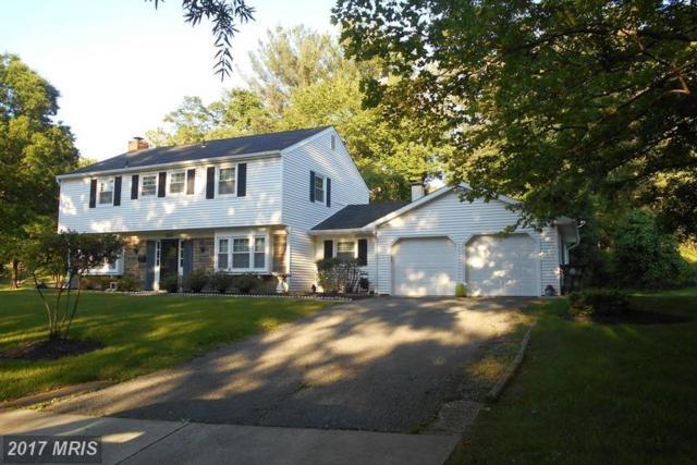 12705 Silverbirch Lane, Laurel, MD 20708 (#PG9981045) :: LoCoMusings