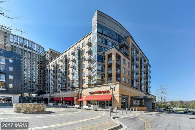 6506 America Boulevard #703, Hyattsville, MD 20782 (#PG9982075) :: Pearson Smith Realty
