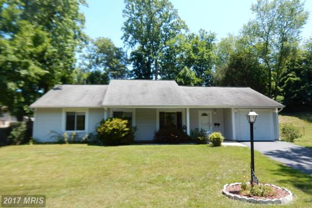 15819 Palai Turn, Bowie, MD 20716 (#PG9984492) :: The Sebeck Team of RE/MAX Preferred