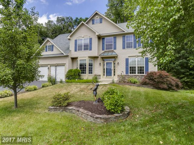 15613 Overchase Lane, Bowie, MD 20715 (#PG9989154) :: Pearson Smith Realty