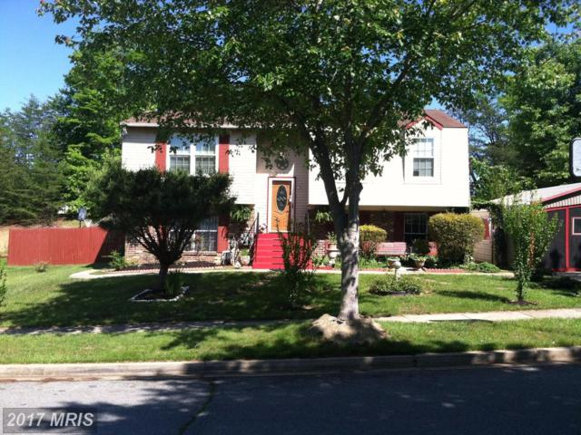 218 Eagle Head Drive, Fort Washington, MD 20744 (#PG9997745) :: Pearson Smith Realty