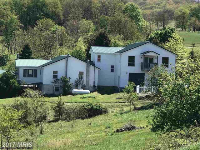 64 Windy Ridge Lane, Albright, WV 26519 (#PR10060692) :: LoCoMusings