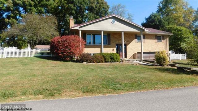 307 Meadow View Drive, Arthurdale, WV 26520 (#PR10077326) :: LoCoMusings