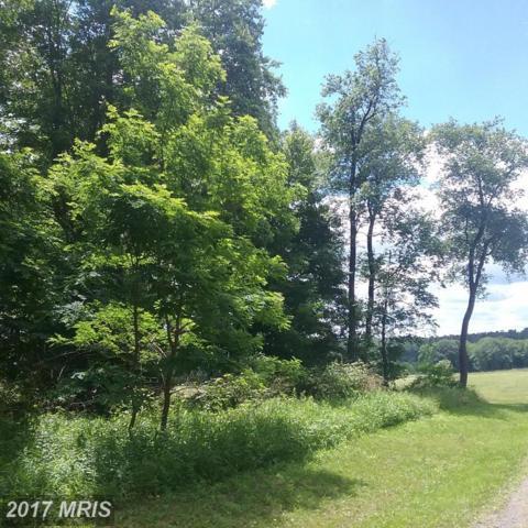 Snowy Creek Estates Lot #18, Terra Alta, WV 26764 (#PR9988796) :: LoCoMusings
