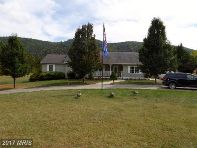 46 Bald Eagle Way, Franklin, WV 26807 (#PT10068041) :: LoCoMusings