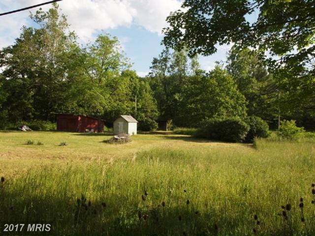 Hawes Run, Blue Gray Trail, Brandywine, WV 26802 (#PT10118483) :: Hill Crest Realty