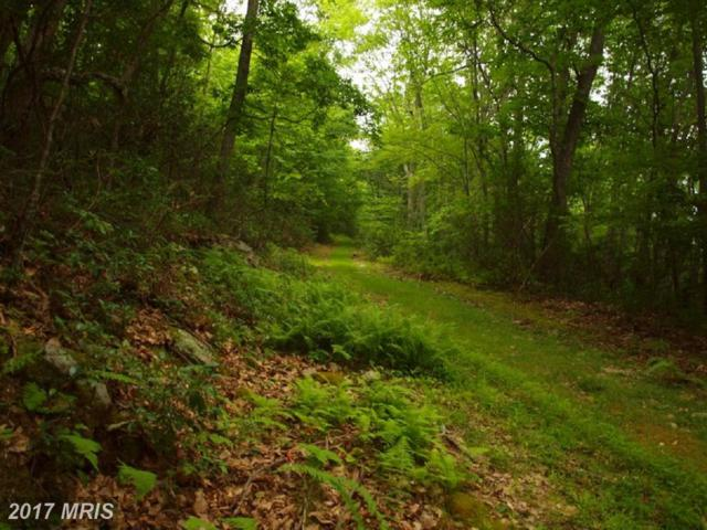 Treasure Mountain Estates, Franklin, WV 26807 (#PT10118487) :: Hill Crest Realty