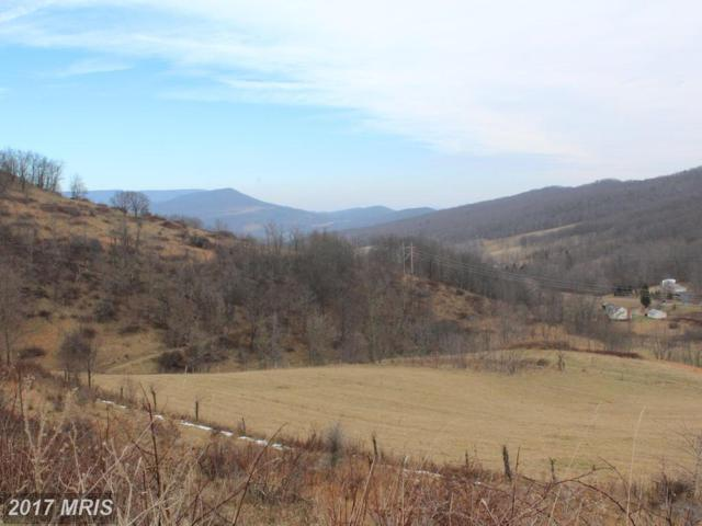 387 ACS Lower Timber Ridge Road, Onego, WV 26886 (#PT10126110) :: Pearson Smith Realty