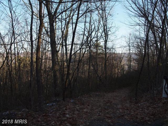 High Valley Road, Franklin, WV 26807 (#PT10161908) :: Hill Crest Realty