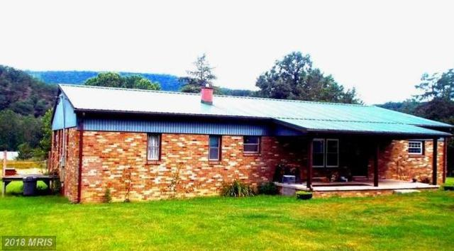 5255 South Mill Creek Road, Upper Tract, WV 26866 (#PT10279876) :: Circadian Realty Group