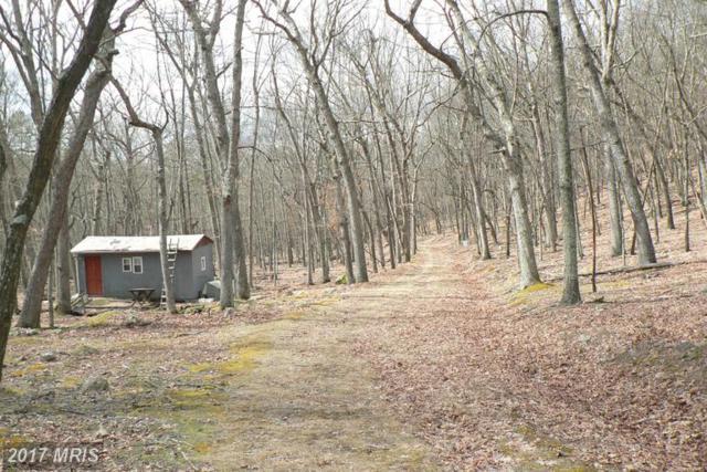 37 ACS Greenwalt Gap, Upper Tract, WV 26866 (#PT9893280) :: LoCoMusings
