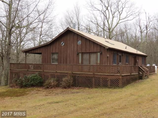 6682 Black Thorn Road, Sugar Grove, WV 26815 (#PT9989620) :: LoCoMusings