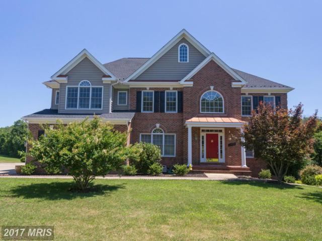 12850 Gables Green Way, Catharpin, VA 20143 (#PW10001813) :: Pearson Smith Realty