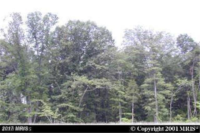 11831 Sudley Manor Drive, Manassas, VA 20109 (#PW10004348) :: Pearson Smith Realty