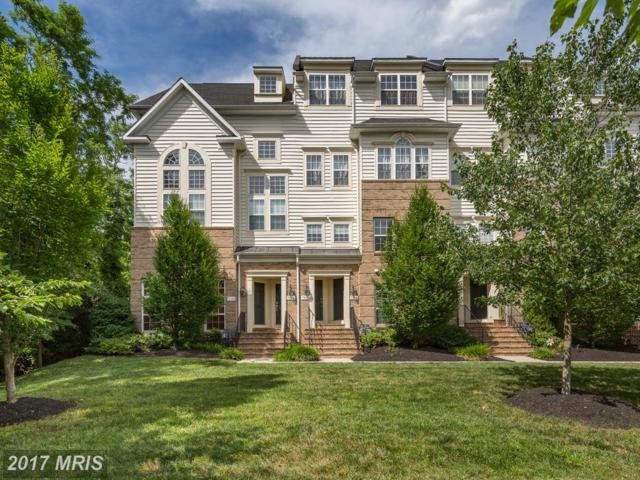 7094 Little Thames Drive #219, Gainesville, VA 20155 (#PW10011696) :: Pearson Smith Realty