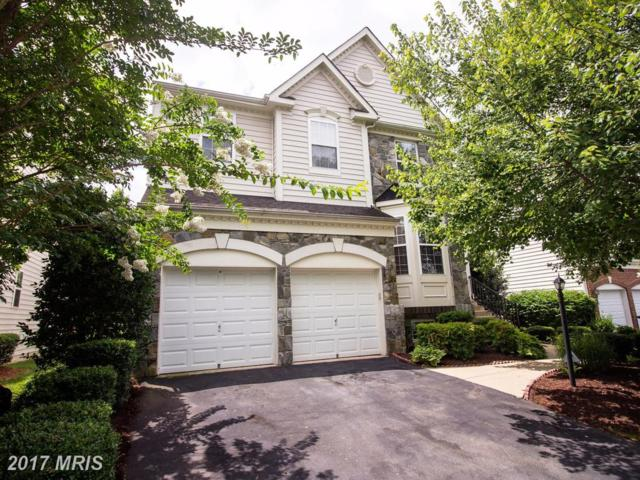 4843 Montega Drive, Woodbridge, VA 22192 (#PW10012772) :: Pearson Smith Realty