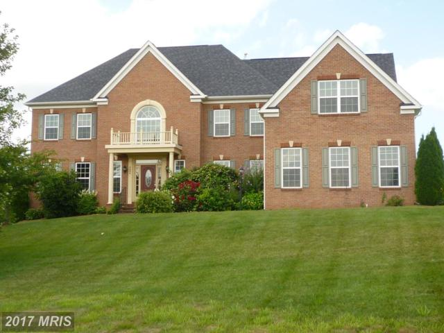 4604 Starting Post Court, Gainesville, VA 20155 (#PW10013719) :: Pearson Smith Realty