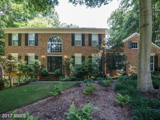 12731 Gold Cup Trail, Manassas, VA 20112 (#PW10015099) :: Pearson Smith Realty