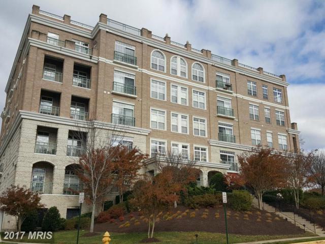 820 Belmont Bay Drive #404, Woodbridge, VA 22191 (#PW10019679) :: Pearson Smith Realty