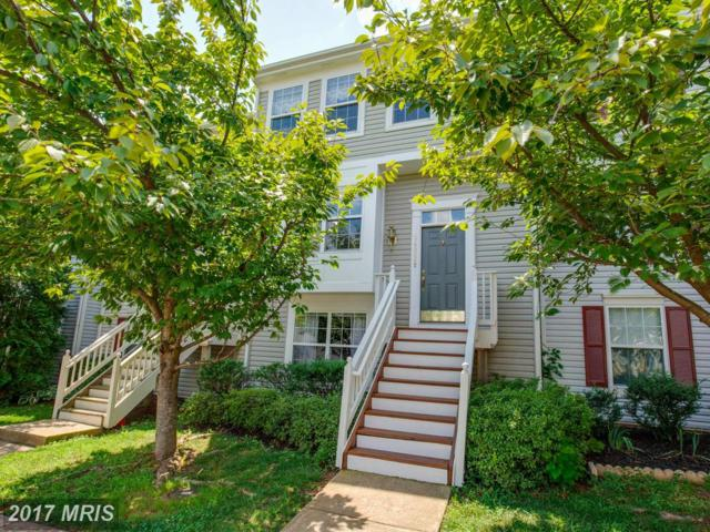 14305 Newbern Loop, Gainesville, VA 20155 (#PW10023318) :: Pearson Smith Realty