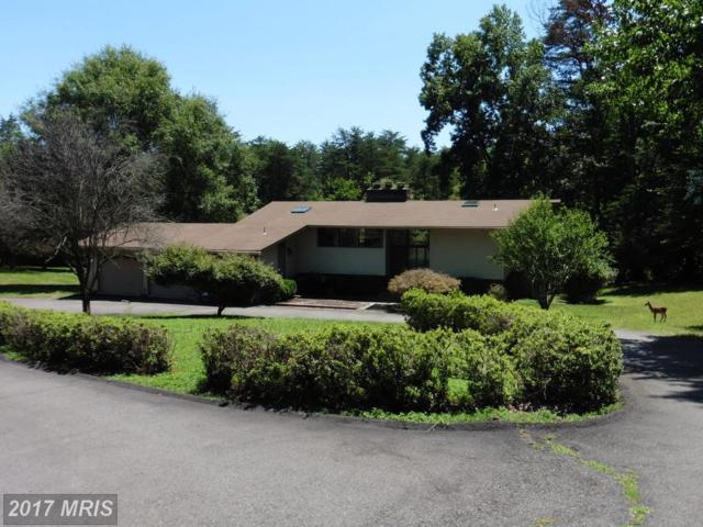 6445 Steeple Chase Lane, Manassas, VA 20111 (#PW10025663) :: Pearson Smith Realty