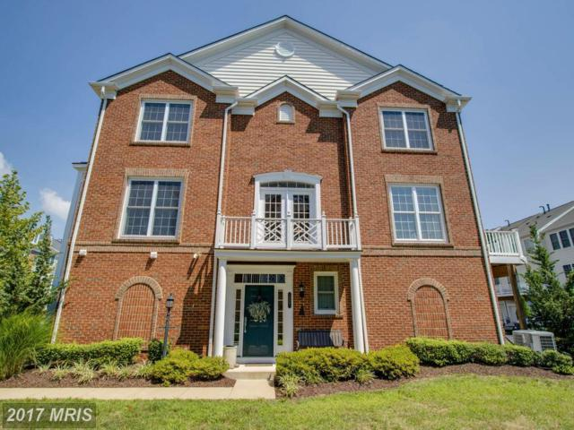 14861 Potomac Branch Drive, Woodbridge, VA 22191 (#PW10025685) :: Pearson Smith Realty