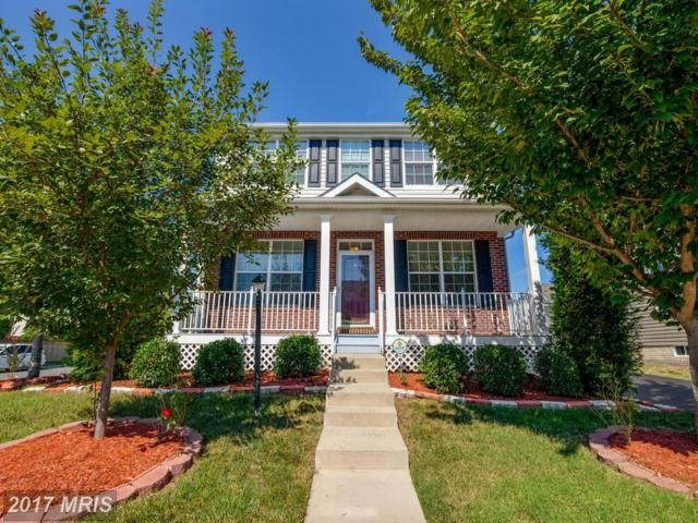 14366 Broadwinged Drive, Gainesville, VA 20155 (#PW10029824) :: Pearson Smith Realty