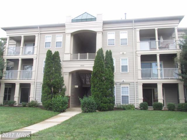 1031 Gardenview Loop #201, Woodbridge, VA 22191 (#PW10030319) :: Pearson Smith Realty