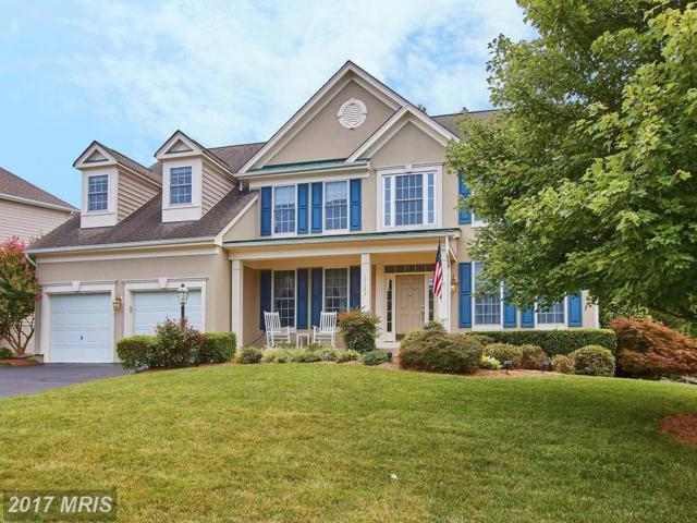 12325 Indigo Springs Court, Bristow, VA 20136 (#PW10031626) :: RE/MAX Gateway